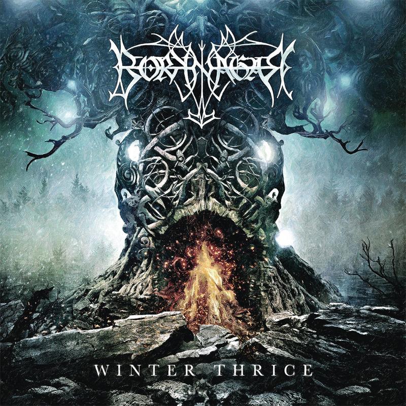 """""""Winter Thrice"""" von Boknagar"""